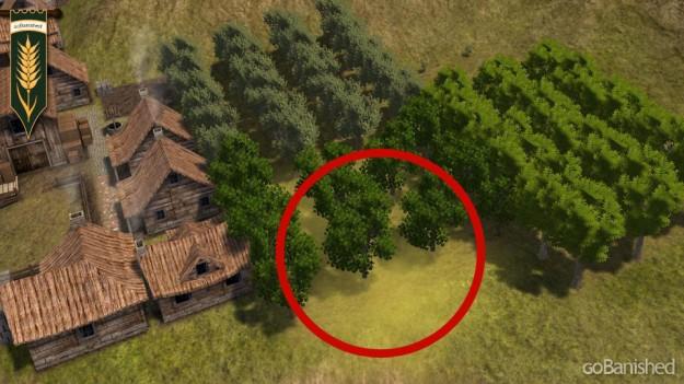 Banished: Befall einer Nussbaumplantage